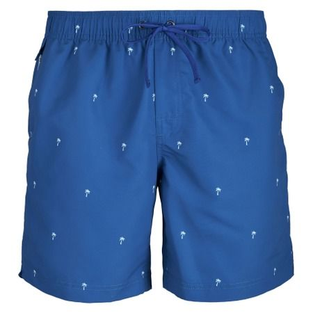 Scale Shorts - Royal